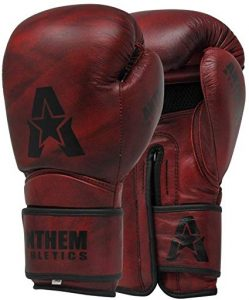 Anthem Athletics Stormbringer II Leather Boxing Gloves - Muay Thai, Kickboxing, Striking