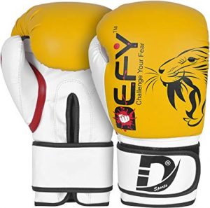 Defy Boxing Gloves for Men & Women Training