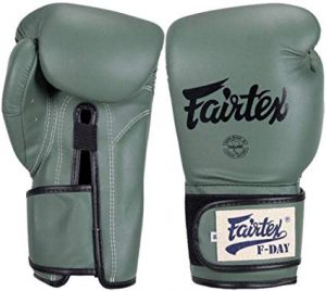 Fairtex Microfibre Boxing Gloves Muay Thai Boxing- BGV14, BGV1 Limited Edition, BGV12, BGV11, BGV18