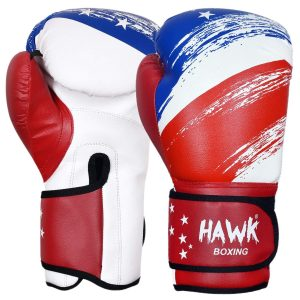 Hawk Sports Boxing Gloves USA Limited Edition